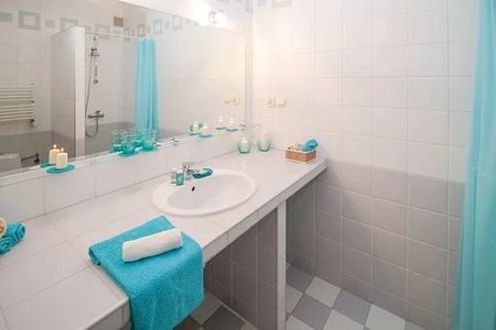 Professional bathroom cleaning